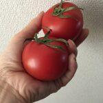福島産の野菜とか、ホントに大丈夫なんだろうか?